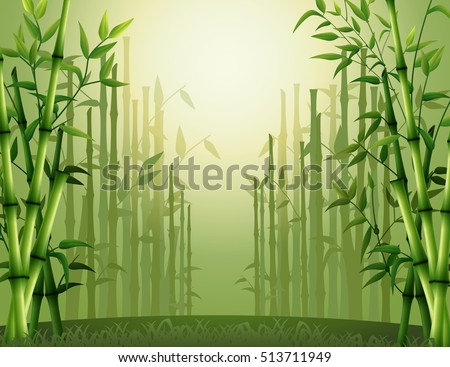 stock-vector-vector-illustration-of-green-bamboo-trees-background-inside-the-forest