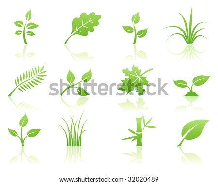 Vector illustration of green ecology nature floral icon set with reflections
