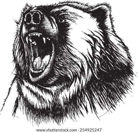 vector illustration of growling