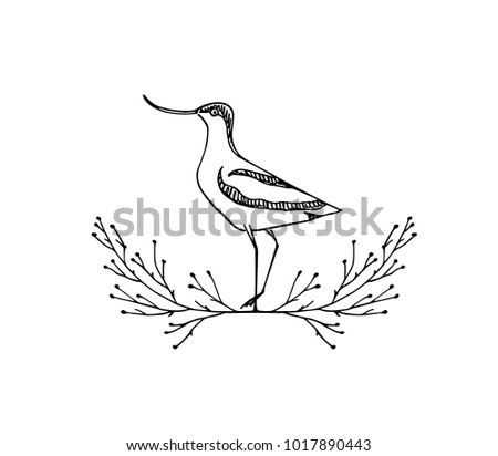 Vector Vector Illustration Of Hand Drawn Cute Avocet In Floral Laurel.  Beautiful Animal Design Elements, ...