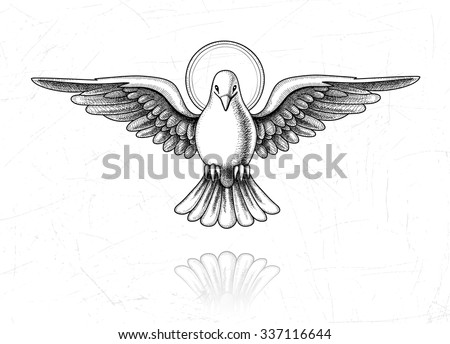 Vector illustration of Holy Spirit. Dove in flight. Vintage style of the image. Design elements for your projects. Vintage engraving. Linear drawing.
