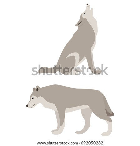 Vector illustration of howling and walking wolves isolated on white background
