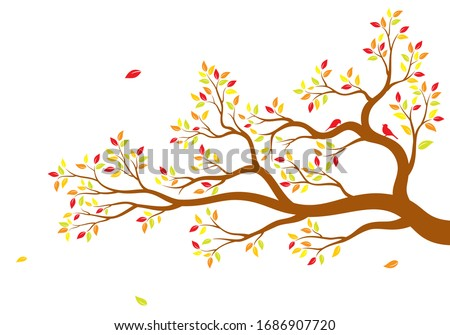 vector illustration of isolated