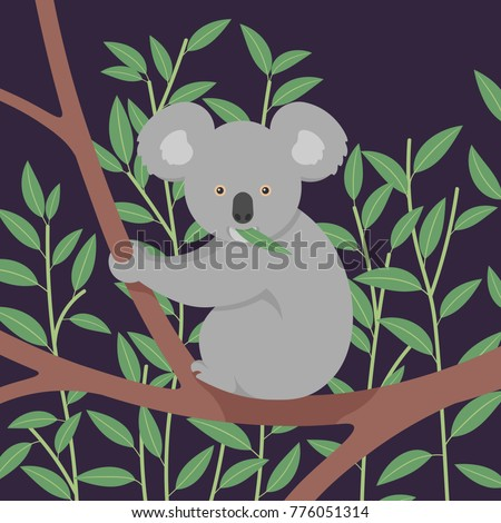 vector illustration of koala
