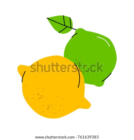 vector illustration of lime and
