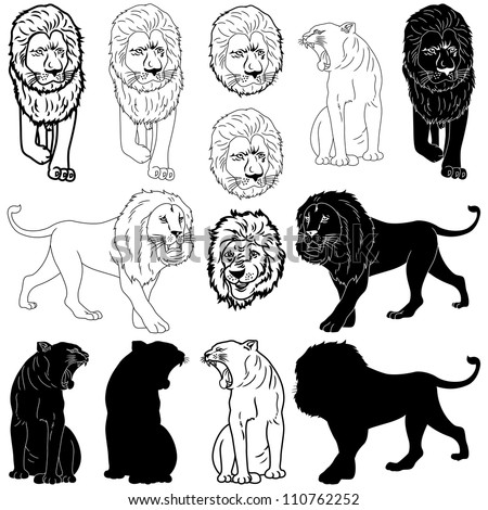 Vector illustration of lion design set