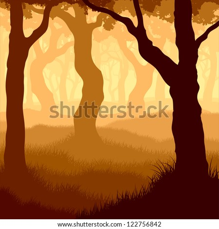 Vector illustration of many tree trunks within forest with grass and sunshine.