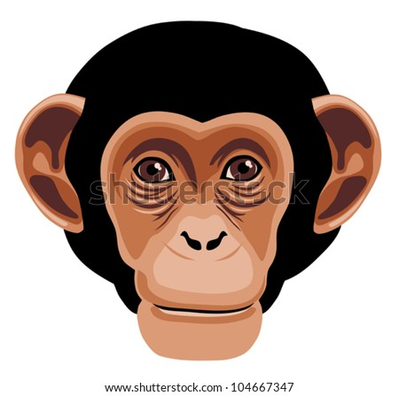 Vector illustration of monkey head cartoon style