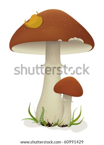 Vector illustration of mushrooms with leaf and grass. Created using meshes and gradients