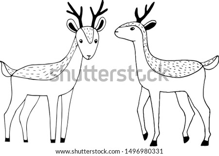 Vector illustration of outlines of reindeers in scandinavian flat style . Black outline drawing of deers isolated on white background.