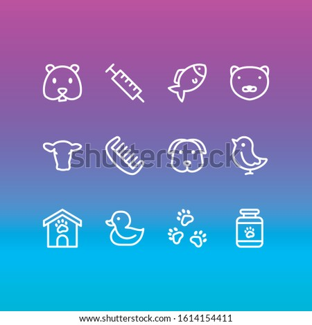 Vector illustration of 12 pet icons line style. Editable set of chicken, dog, syringe and other icon elements. ストックフォト ©
