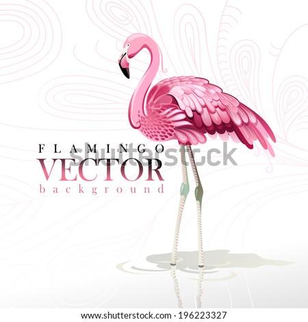 vector illustration of pink
