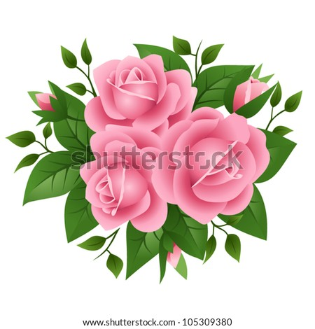 Vector illustration of pink roses