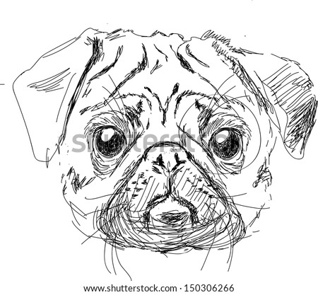 vector illustration of pug dog