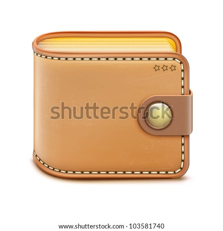 Vector illustration of realistic closed wallet on a white background