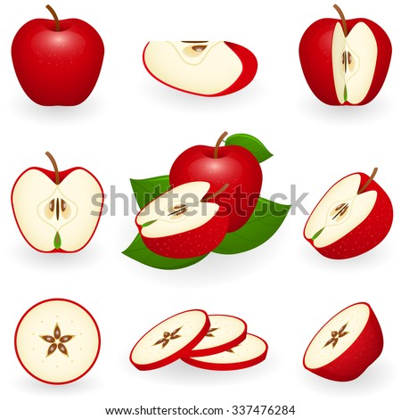 Vector illustration of red apple. Sliced apple isolated on white background.