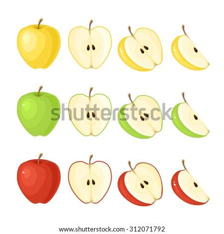 Vector illustration of red, green, yellow ripe apple - whole and slice isolated on white background.