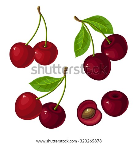 vector illustration of ripe