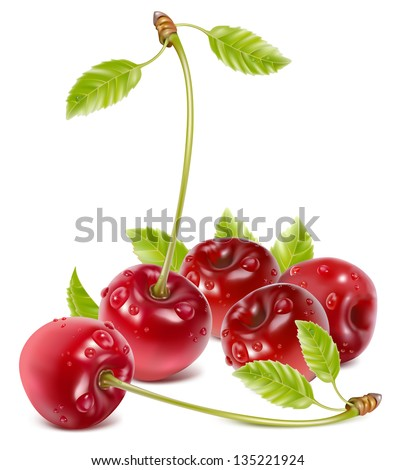 vector illustration of ripe red