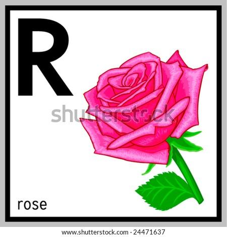 Vector illustration of rose  R Letter In Rose