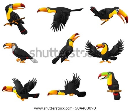 Shutterstock Vector illustration of Set of toucans cartoon