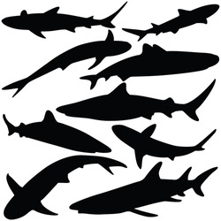 Vector illustration of shark silhouettes collection isolated on white background.