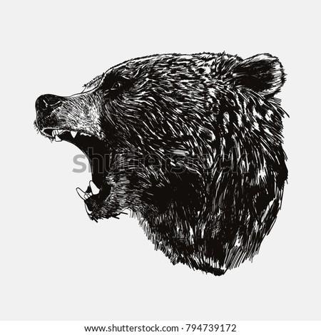 vector illustration of side