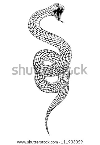 Vector illustration of snake with an open mouth