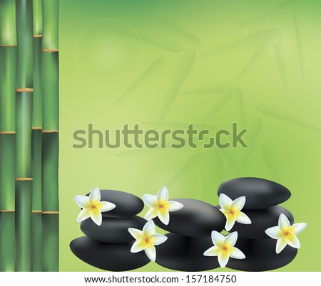 vector illustration of spa decoration including spa, plumeria and bamboo