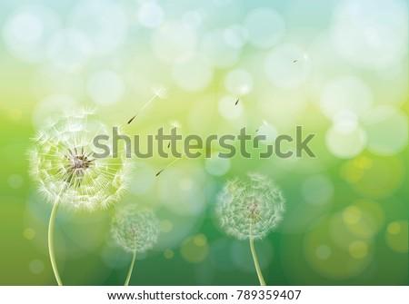 vector illustration of spring