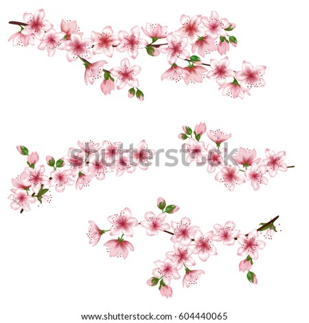 vector illustration of spring