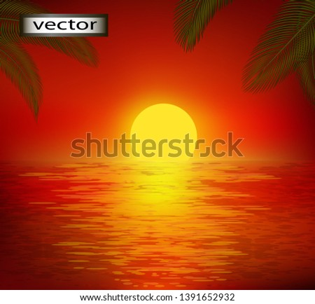 vector illustration of sunset