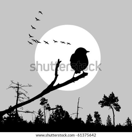 vector  illustration of the bird on branch