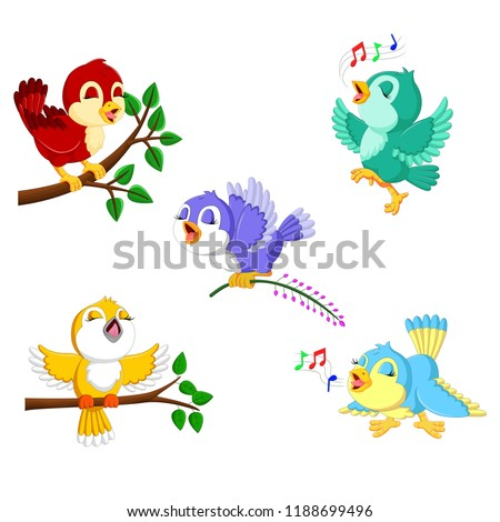 vector illustration of the collection birds with the different color and activities