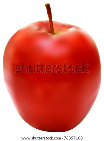 Vector illustration of the fresh red apple