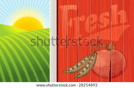 stock-vector-vector-illustration-of-the-side-of-a-barn-with-a-faded-vegetable-illustration-and-a-sunrise-over-28254892.jpg