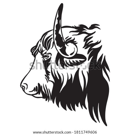Vector illustration of Tibetan Yak in black color isolated on white background. Engraving template image of bull in profile. Design element for poster, t shirt, emblem, logo, sign. Stok fotoğraf ©