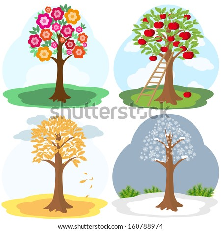 Vector illustration of tree in four seasons: spring, summer, autumn, winter
