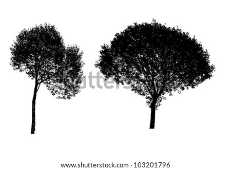Vector illustration of tree silhouettes