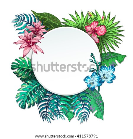 vector illustration of tropical