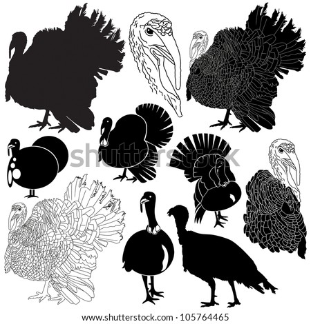 Vector illustration of turkey silhouettes set.