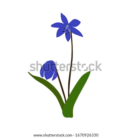 vector illustration of two leaf