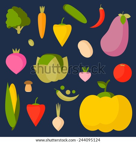 Vector illustration of vegetables. Set of flat design style icons.  #244095124