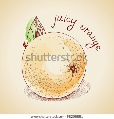 Vector illustration of vintage orange