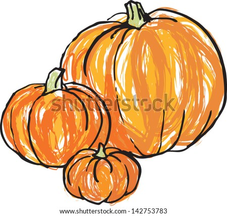 stock-vector-vector-illustration-of-whole-pumpkins