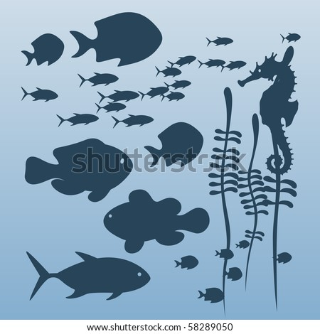 Vector illustration on a sea theme - stock vector