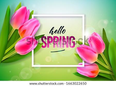 vector illustration on a spring