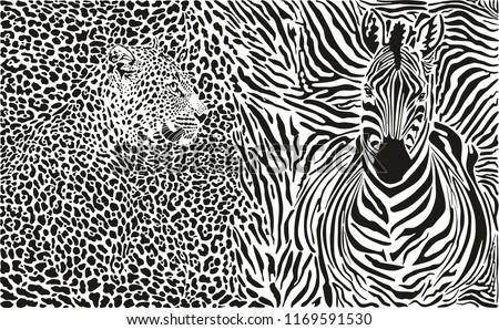 vector illustration pattern background leopard and zebra skins