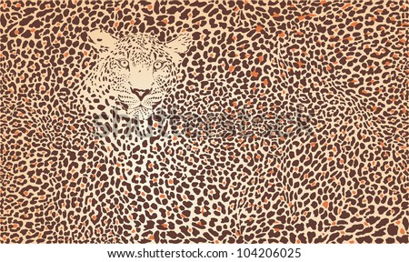 Vector illustration pattern background leopard skins and head