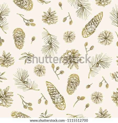 Vector illustration. Pen style sketch. Nature elements, forest treasures. Leaves, abranches, pine cone. Element of seamless pattern.